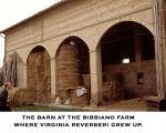 Barn in Italy