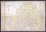 Cloquet Forest Cover Type Map