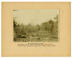 An area burned in 1915