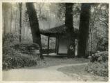 A beauty spot along a temple approach.