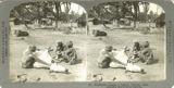 Blacksmith shoeing a bullock, Calcutta