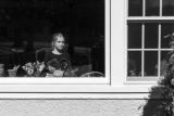 A young girl sitting at a window, with a group of stuffed animals placed there for a neighborhood bear hunt