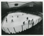 Bulldog hockey players in action during game, view from above with crowd