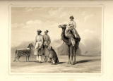 Cheetas sent by the King of Oude to accompany the Governor General.