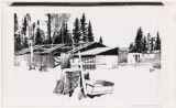 Abandoned Lumber Camp