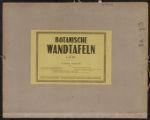 Botanische Wandtafeln, Numbers 82-93