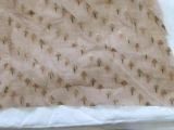 Ashavali brocade fragment