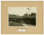 1925 view of arboretum retaken in 1928