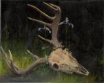 Deer Skull and Irises