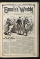 Beadle's Weekly, Volume 01, Number 17